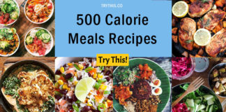 500 Calorie Meals Recipes