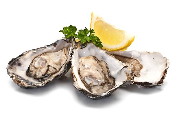 Oysters as a B12 Source