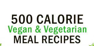 500 Calorie Vegan & Vegetarian Meal Recipes