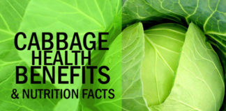 Top 10 Cabbage Health Benefits and Nutrition Facts