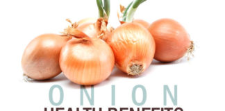 Top 10 Onion Health Benefits and Nutrition Facts