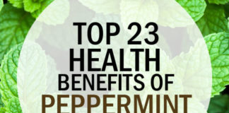 Top 23 Health Benefits of Peppermint Oil