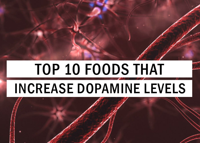 Top 10 Foods That Increase Dopamine Levels Food Tips